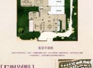 F型别墅,面积约342平方米